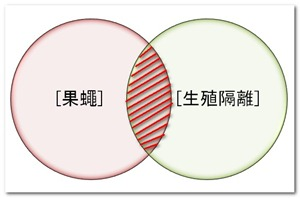 2012-12-16_164351